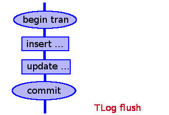 tlog flush delayed